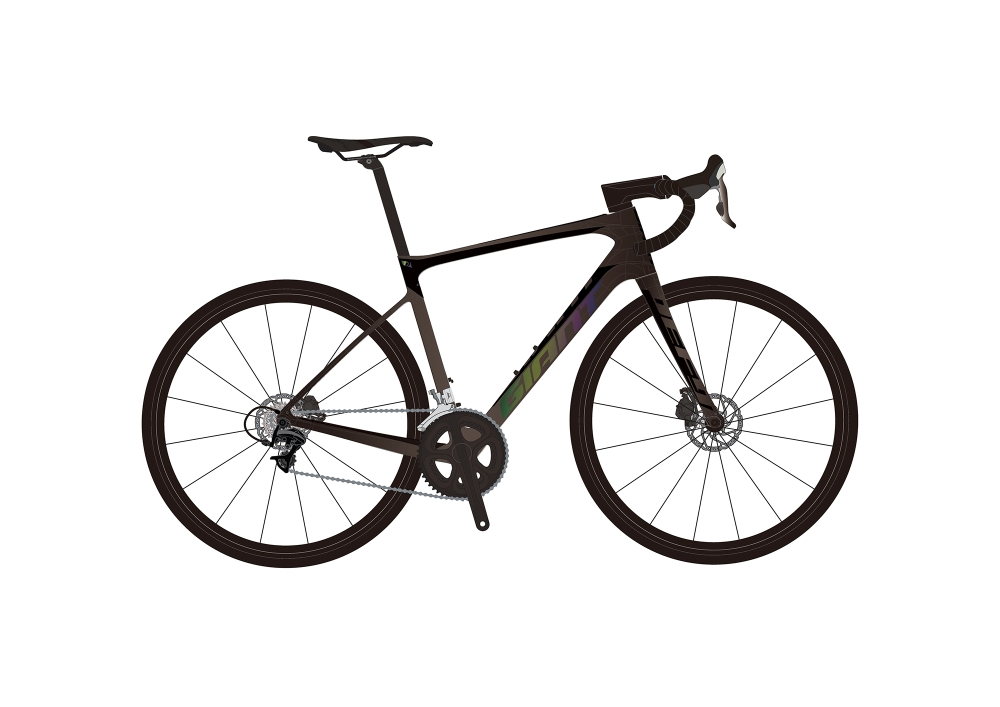 GIANT Defy Advanced Pro 0 S Gunmetalblack-Iris Matt-Gloss - Bike Maniac
