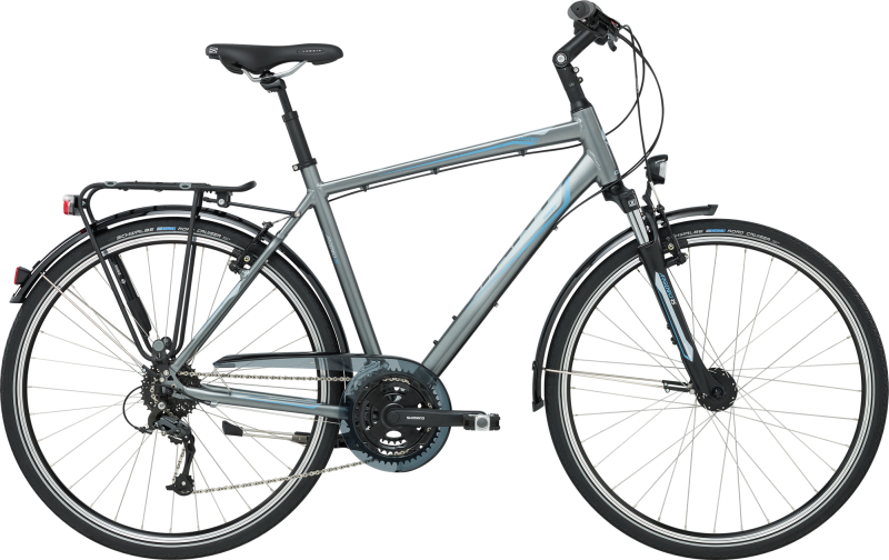 GIANT Argento 2 GTS L Nickel Grey L - Bergmann Bike & Outdoor